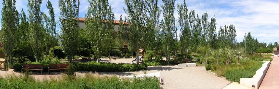 Plantacions ornamentals al Parc Garcia Fosas