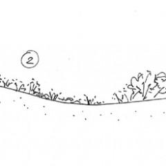 Croquis vegetació