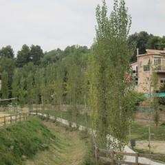 Evolució del parc - oct 2014