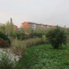 Riera de St. Cugat - octubre 2013