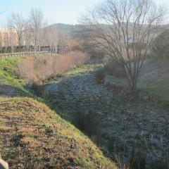 Riera de St. Cugat - gener 2014